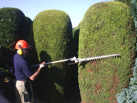 Tree & Lawn Care and Landscaping for Penticton, Summerland, Okanagan Falls & Naramata